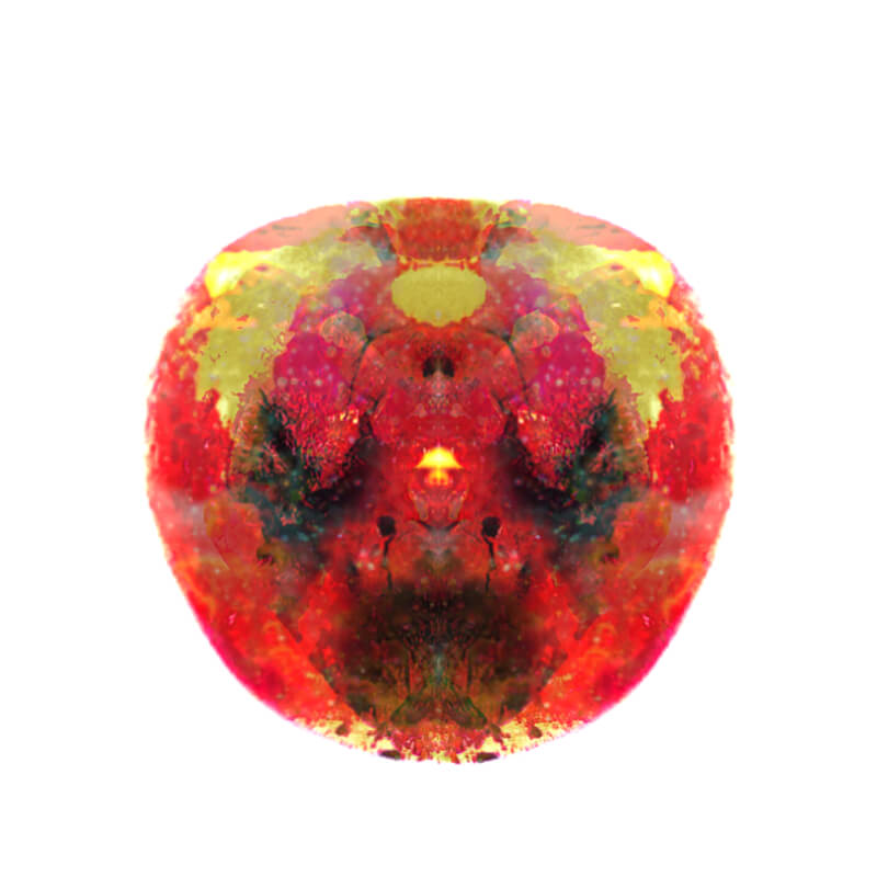 Fruit-malum-TKT