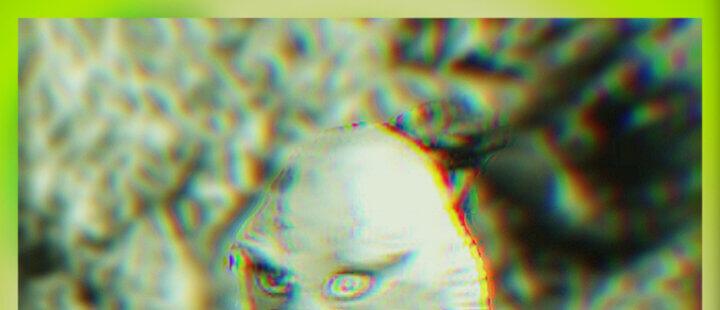Homo Amphibius